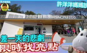 _新竹動物園, 新竹市動物園,新竹市立動物園